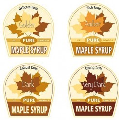 maple-syrup-grades-2014-vermont