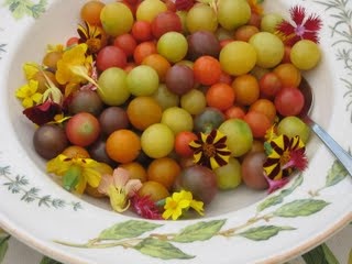 Fresh tomatoes from Anjali Farms during Vermont Farm Trail's 2011 Dinner