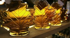 vermont-maple-leaf-syrup-trip