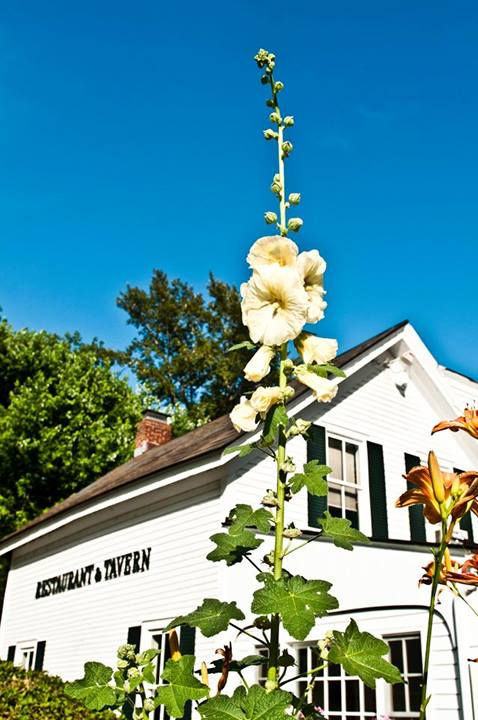 Perfect-Wife-Southern-Vermont-Restaurant-Week