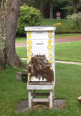 honeybee hive made of four boxes with painted flowers covered with honeybees on the front on a stand on a grassy lawn with another honeybee hive in the distance