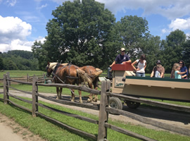 two bridled brown horses with blonde manes and tails pulling painted wagon ride with a family in the wagon all behind a rustic rail fence